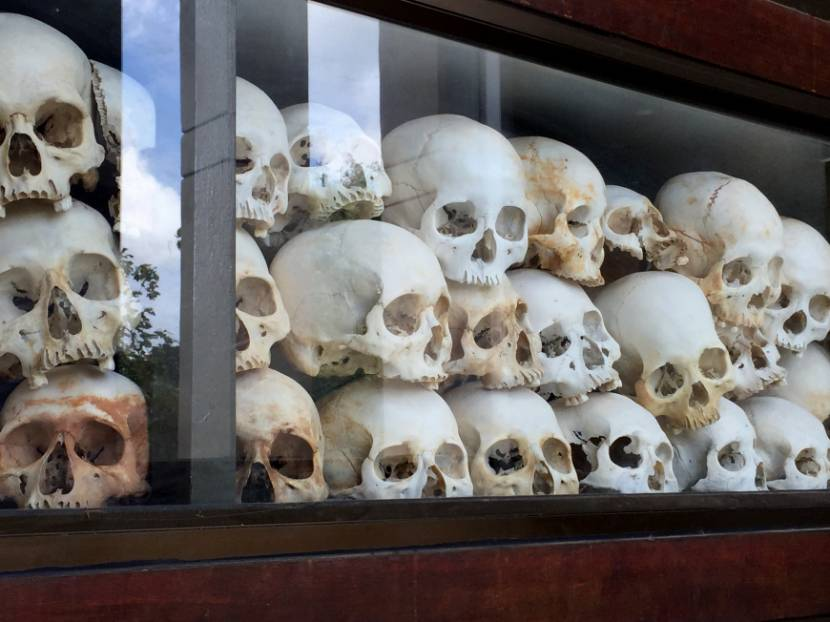 Skulls inside of glass case