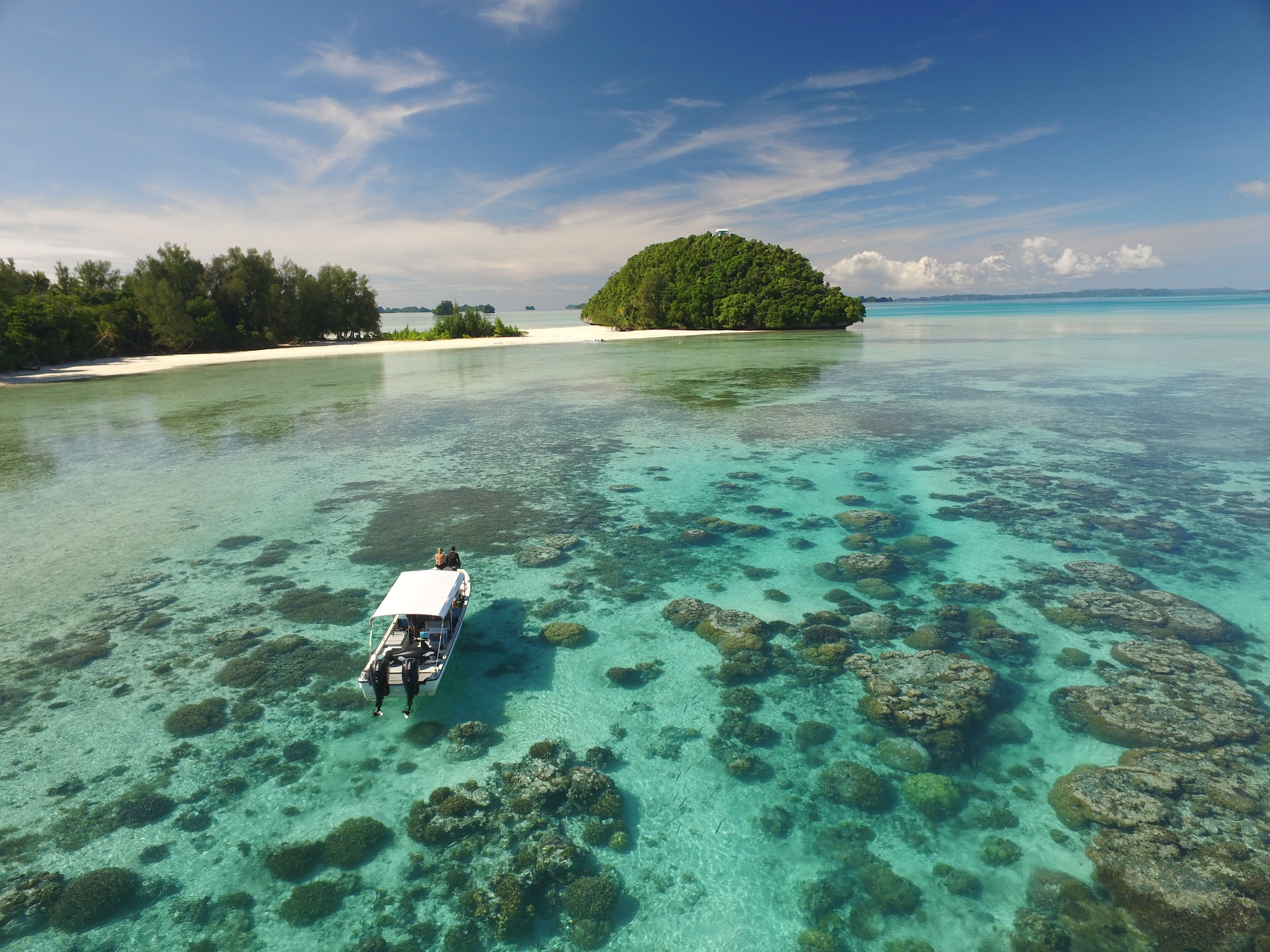 Shallow reefs of Palau