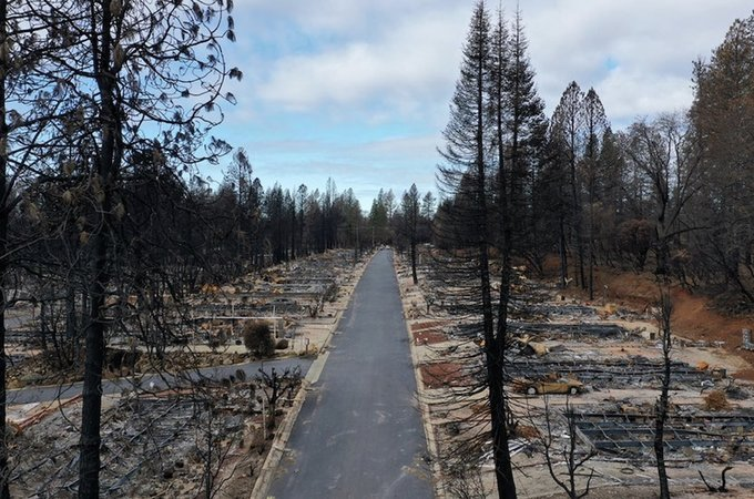 Area destroyed by wildfire