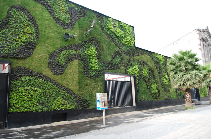 Building with plants growing on the walls