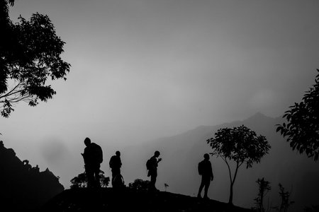 Students on the Wrigley Field Program overlook the foggy canyons of Koke'e National Park on Kaua'i during an early morning hike.