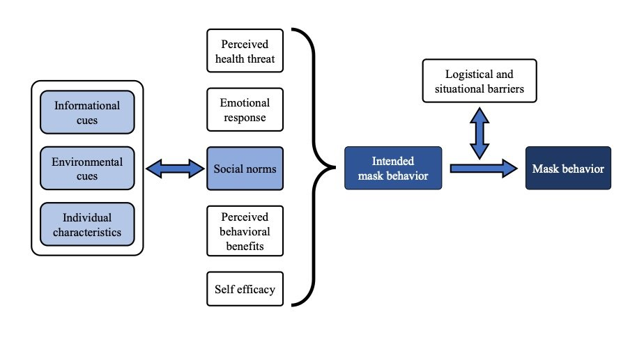 Diagram of mask behavior drivers
