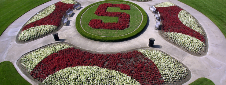 Stanford Oval with flowers