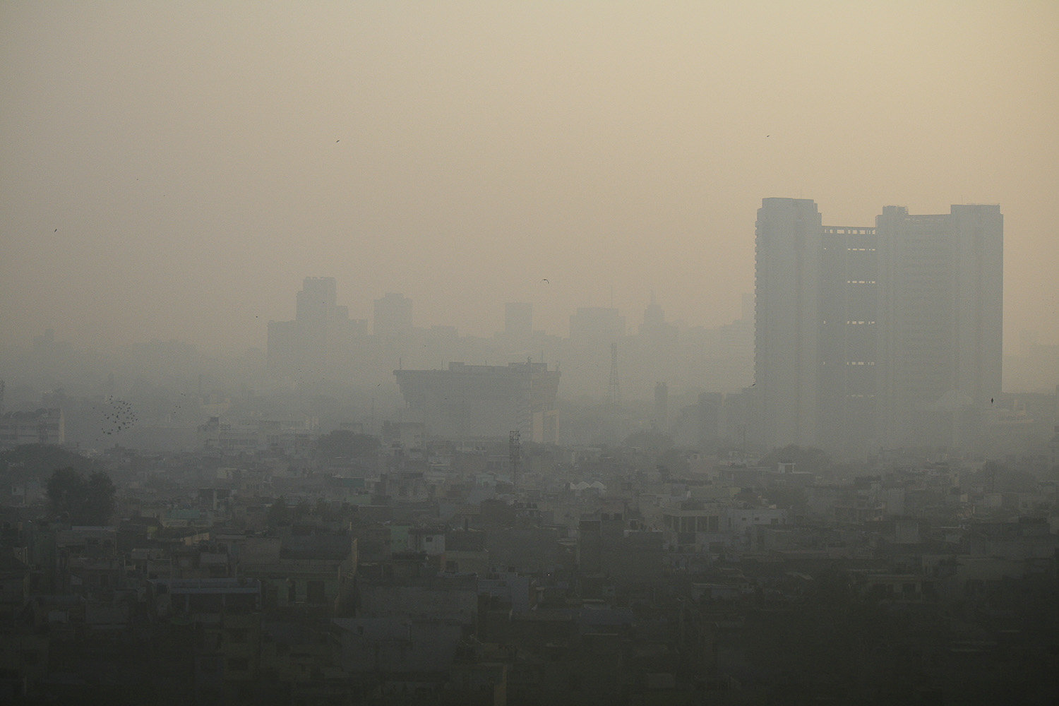 psychological effects of pollution