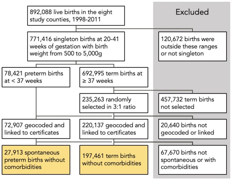 Flow chart of births included in study