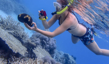 Student snorkeling among coral reefs.