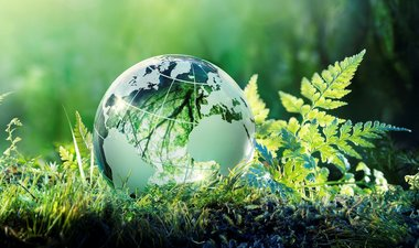 Greenery with globe graphic