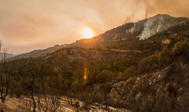 Cedar Fire, Sequoia National Forest